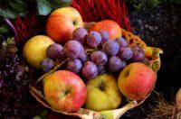 You Cannot Bear Fruit Unless...