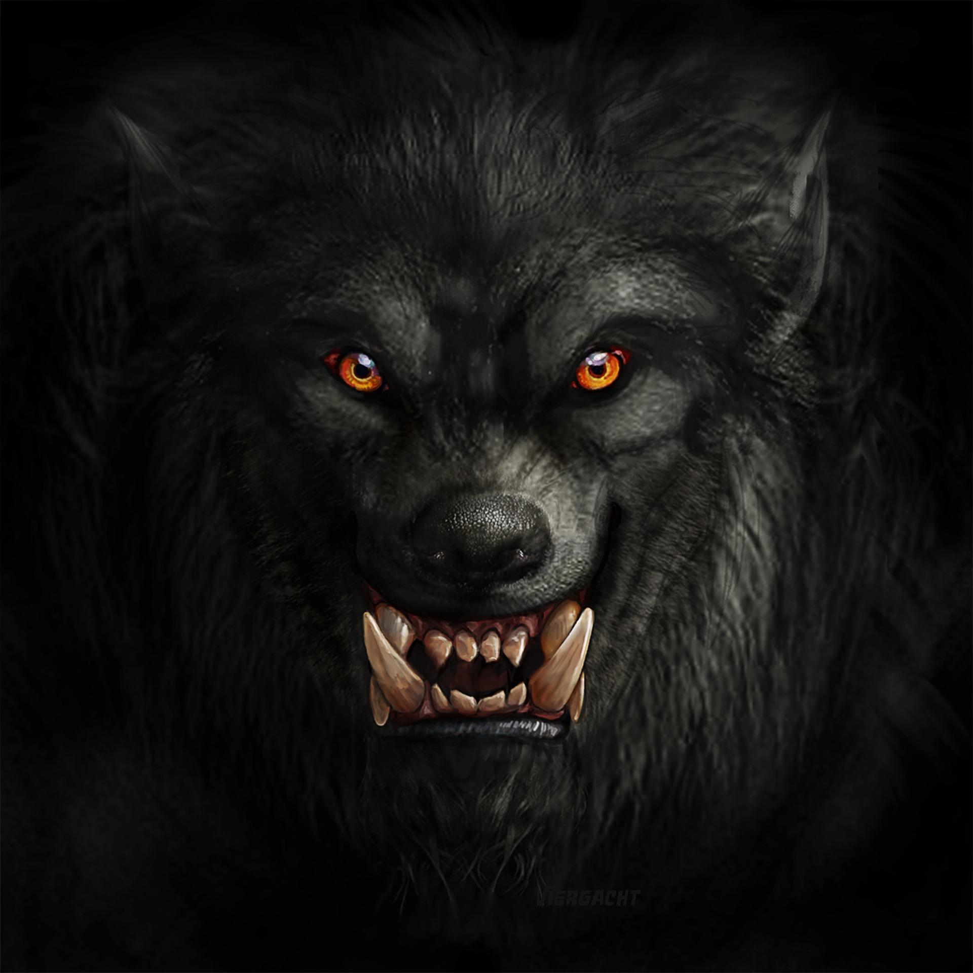 Did God Really Turn a Man Into a Werewolf?